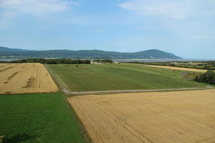 Panorama depuis la tour d'observation du bout de l'île d'Orléans